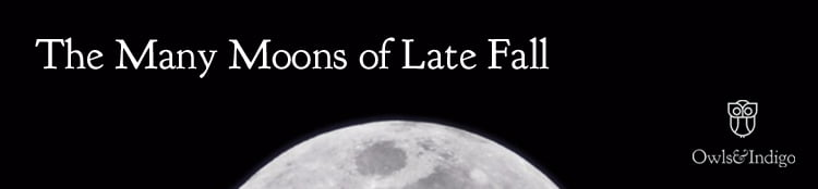 The Many Moons of Late Fall