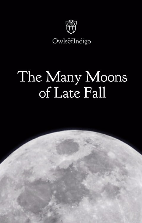 the-many-moons-of-late-fall